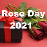 Rose Day Statuses
